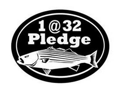 Click image for larger version.  Name:take the pledge.jpg Views:25 Size:28.4 KB ID:17859