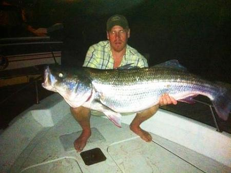 Click image for larger version.  Name:wr striiped bass2.jpg Views:1 Size:24.7 KB ID:13873