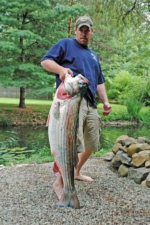 Click image for larger version.  Name:wr striiped bass5.jpg Views:2 Size:74.0 KB ID:13876