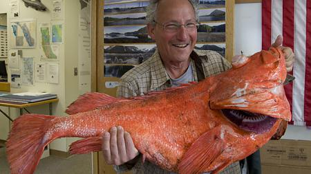 Click image for larger version.  Name:Record rockfish.jpg Views:2 Size:40.5 KB ID:17246